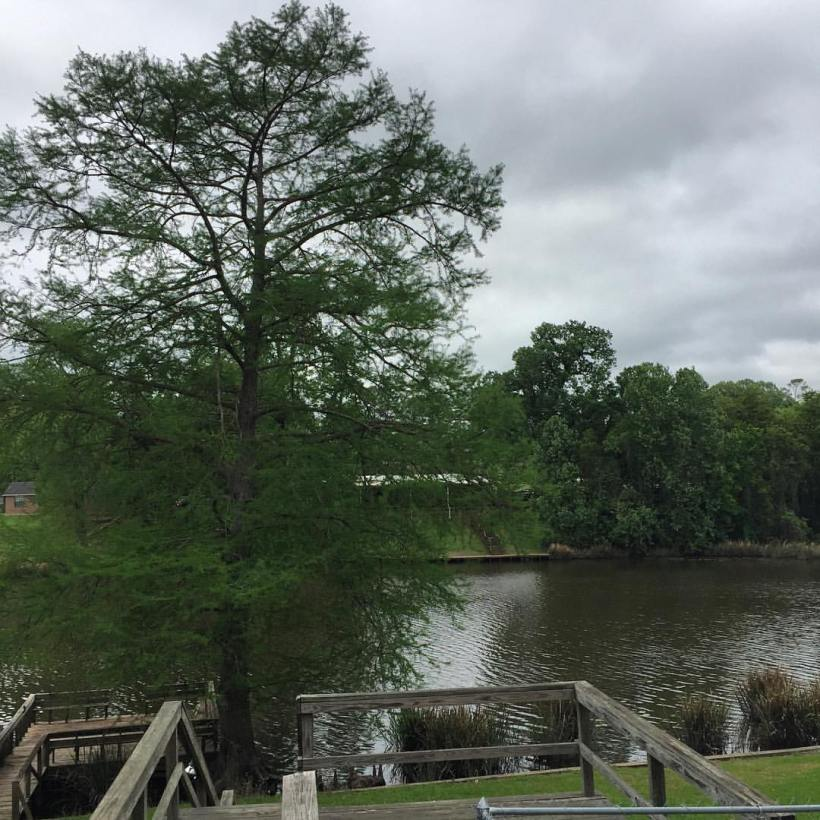 Dad's place, Natchitoches, Louisiana.